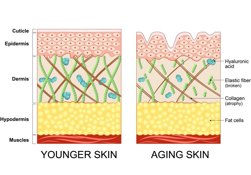 My Pure Skin Stress Oxydatif Young Old